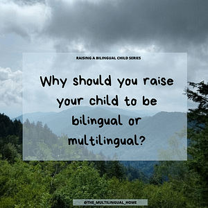Raising bilngual children