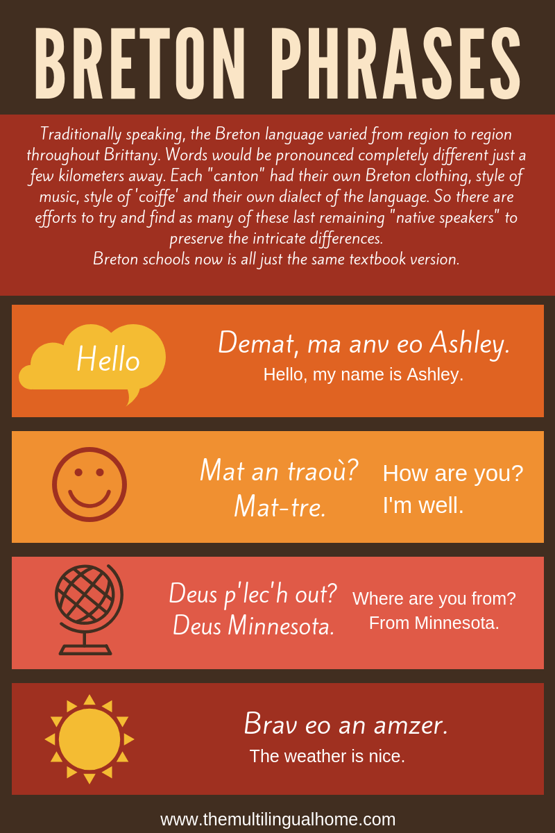 Multilingual Family Interview   Ashley from Fern Island Farm language-learning interviews